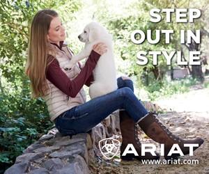 Ariat B (Staffordshire Horse)