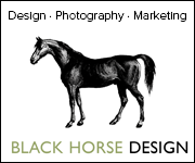 Black Horse Design (Staffordshire Horse)