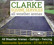 Clarke Equine Services  2018 (Staffordshire Horse)