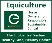 Equiculture 01 (Staffordshire Horse)