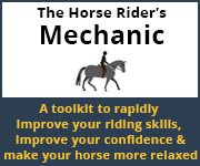 The Horse Rider's Mechanic 01 (Staffordshire Horse)