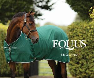 Equus (Staffordshire Horse)