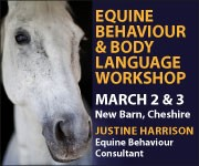 Justine Harrison Workshop March 2019 (Staffordshire Horse)