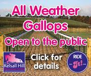 Kelsall Hill Gallops (Staffordshire Horse)