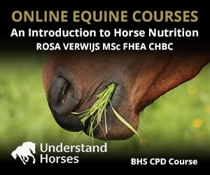 UH - An Introduction To Horse Nutrition (Staffordshire  Horse)