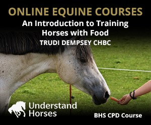 UH - An Introduction To Training Horses With Food (Stafordshire Horse)